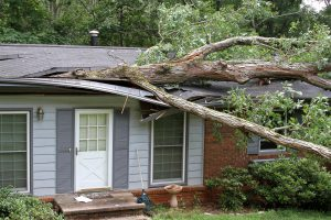 Storm Damage Restoration NE