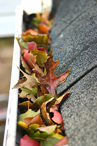 Leaf gutter guard Cedar Rapids Dubuque IA