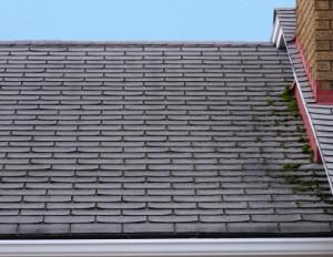 Roofer Des Moines & Ames IA