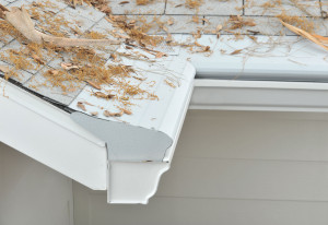 Gutter Protection System Iowa City IA