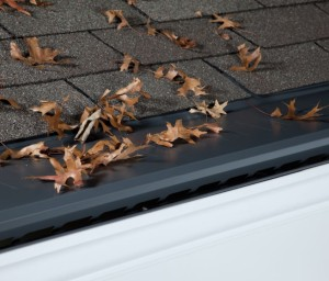Gutter Protection Winterset IA